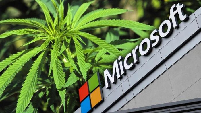 Microsoft ще печели пари от марихуана